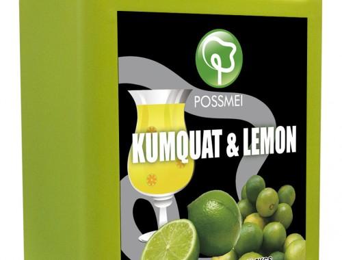 kiwi boba bubble tea syrup juice